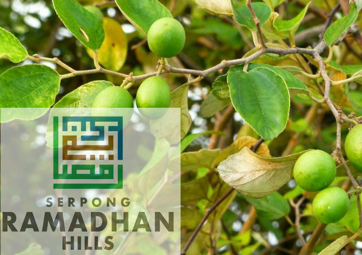 Update Serpong Ramadhan Hills