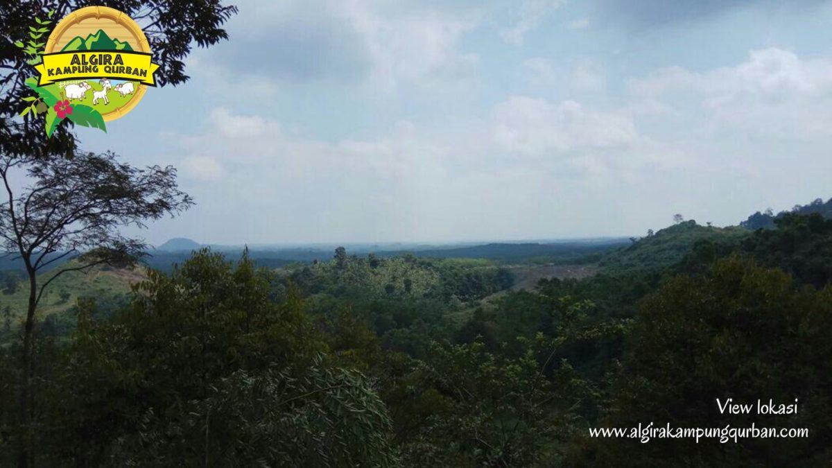view-lokasi-4-algira-kampung-qurban.jpg