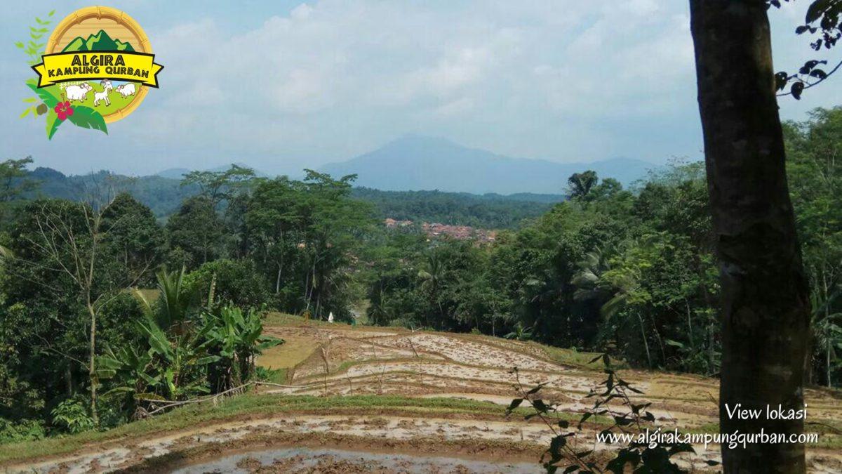 view-lokasi-5-algira-kampung-qurban.jpg