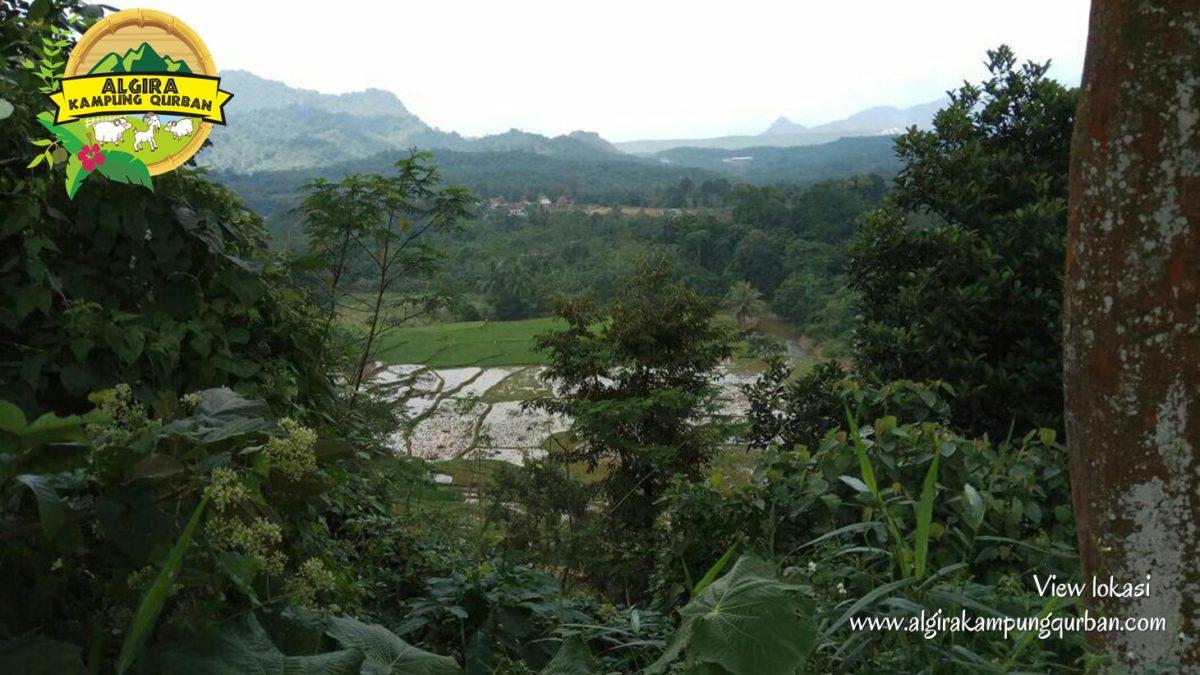 view-lokasi-8-algira-kampung-qurban.jpg