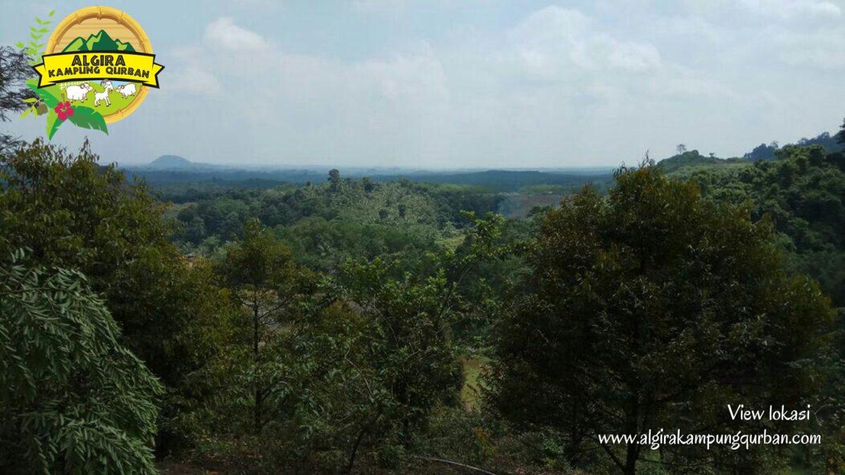 view-lokasi-9-algira-kampung-qurban.jpg