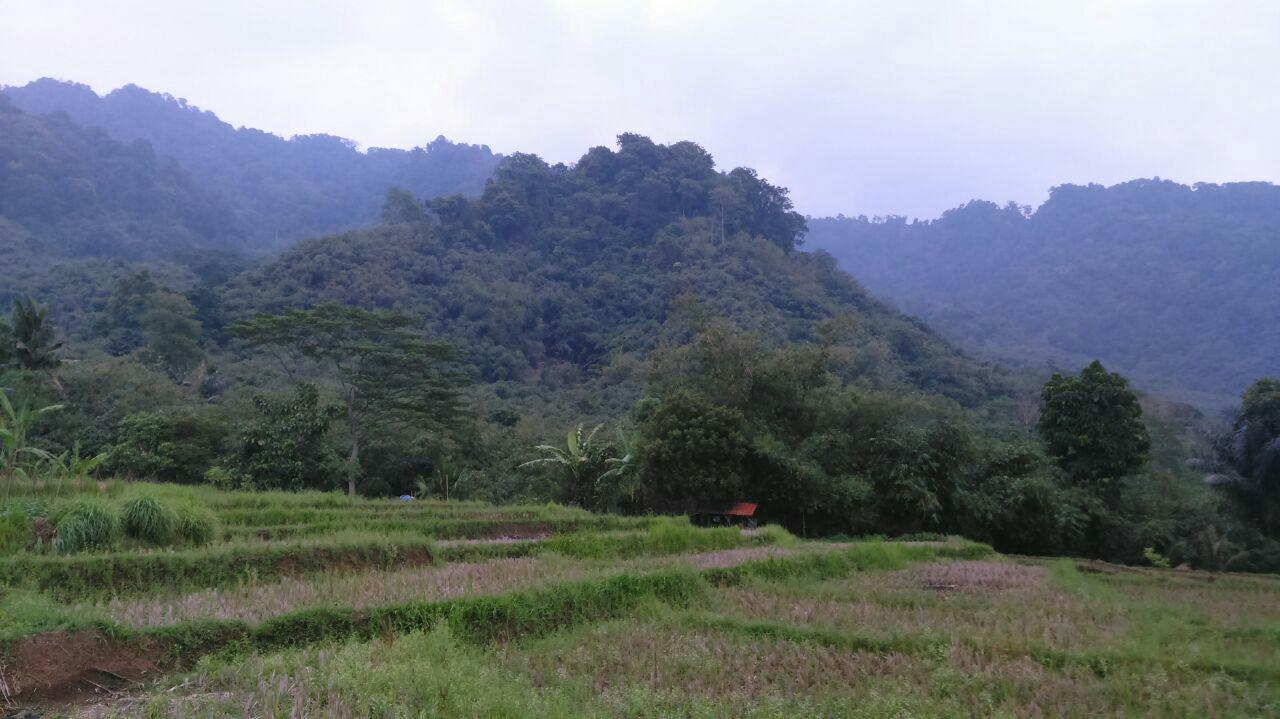 Kampung Tahfidz Jatiluhur 7