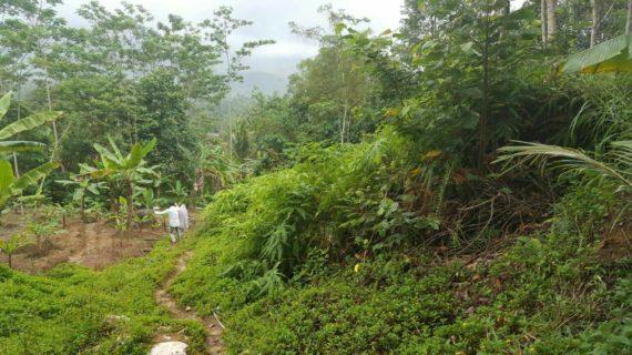 Madania Village – Cigudeg Bogor