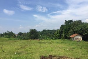 kampoeng ciampea residence