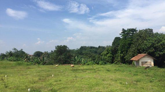 Kavling Kampoeng Ciampea Residence