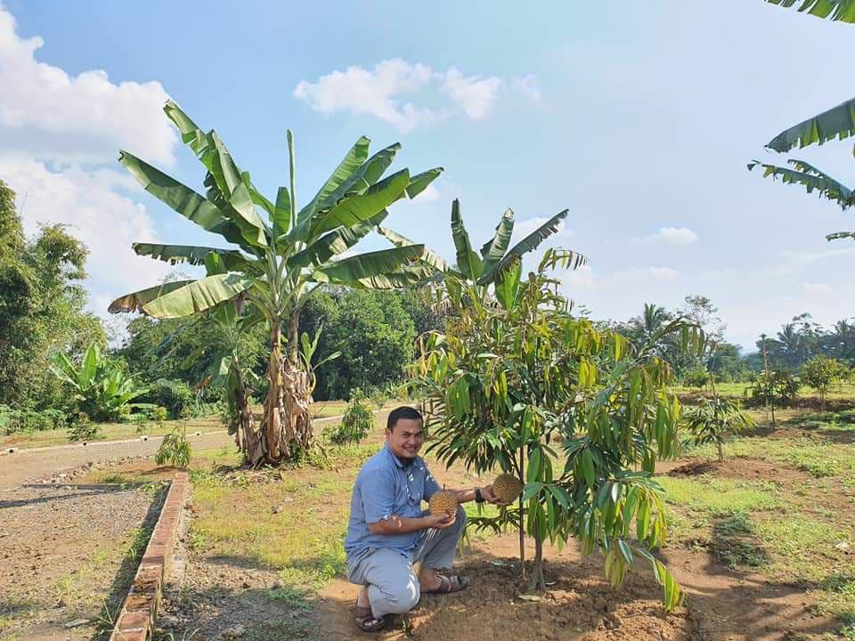 aulia resort cigalontang durian